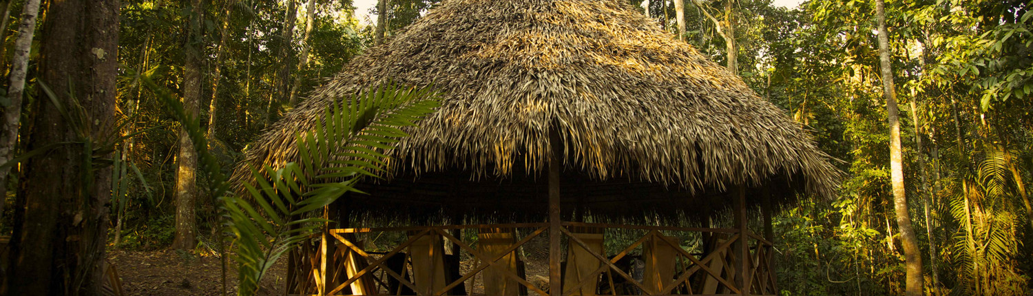 ayahuasca retreats | INamazonia